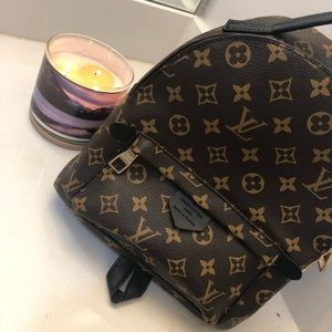 Palm Springs Mini Louis Vuitton backpack